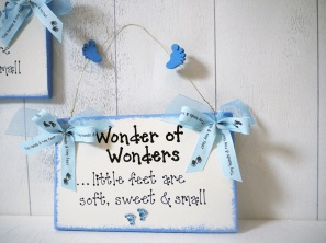 Wonder Of Wonders €8.95 http://craftbay.ie/Product/438/Kids/Baby-And-Toddler/Wonder-of-Wonders