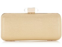 Warehouse €36 - Hardcase Clear Clasp Clutch http://tinyurl.com/qguw633