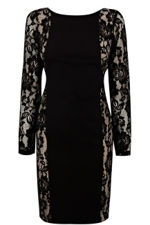 Oasis €88 - Minna Lace Sleeve Dress