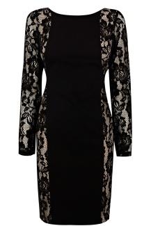 Oasis €88 - Minna Lace Sleeve Dress