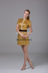 €139 - Elegant High Neck Short Golden Evening Dresses http://www.fannycrown.com/elegant-high-neck-short-golden-evening-dresses.html