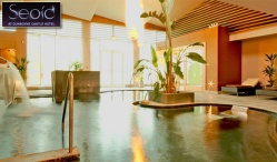 Seoid Spa, Dunboyne Castle Hotel