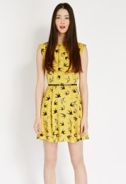 Oasis €56 - Bird Print Skater Dress http://www.oasis-stores.com/bird-print-skater-dress/dresses/oasis/fcp-product/3770039753