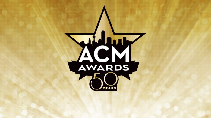 ACM Country Music Awards 2015 2014