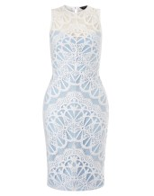 Lipsy @ Next €89 - Lace Overlay Shift Dress http://ie.nextdirect.com/en/g57218s1#L43359