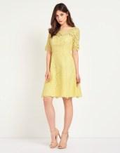 True Decadence @ Next €67 - Lace Scallop Skater Dress http://ie.nextdirect.com/en/gl61380s4#L46478