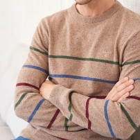 GANT @ Next, €126 - Donegal Oatmeal Striped Crew Sweater http://ie.nextdirect.com/en/g643064s4#437829